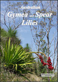 Gymea and Spear Lilies