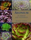 Aeoniums in Habitat and Cultivation